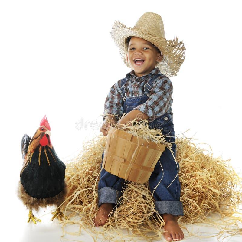 农场助手 库存照片