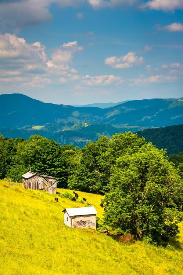 农场和山看法在Wes农村波托马克高地  库存照片