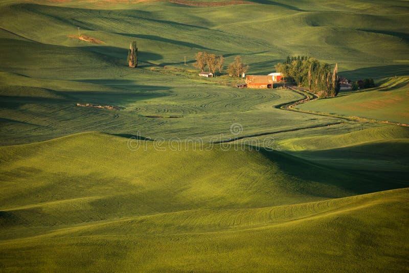 农场在春天 库存照片
