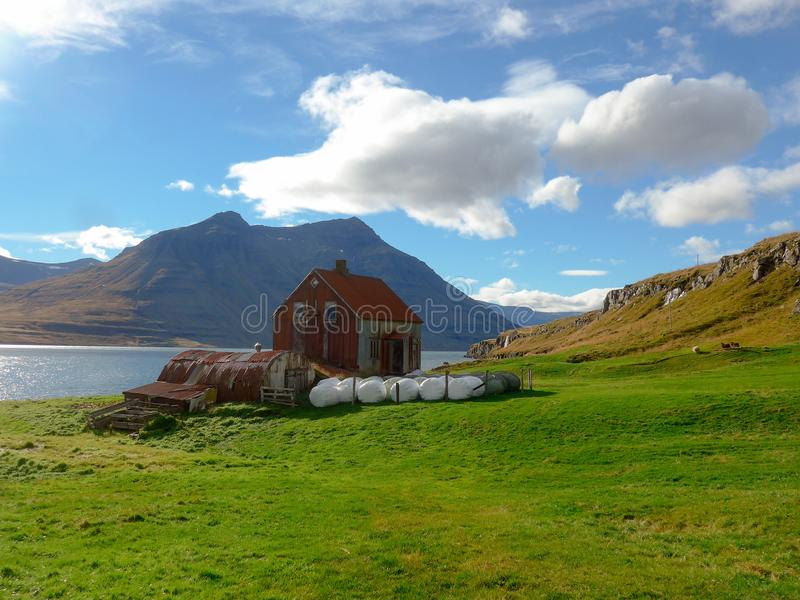 农场在Seyðisfjörður海湾在冰岛 库存图片