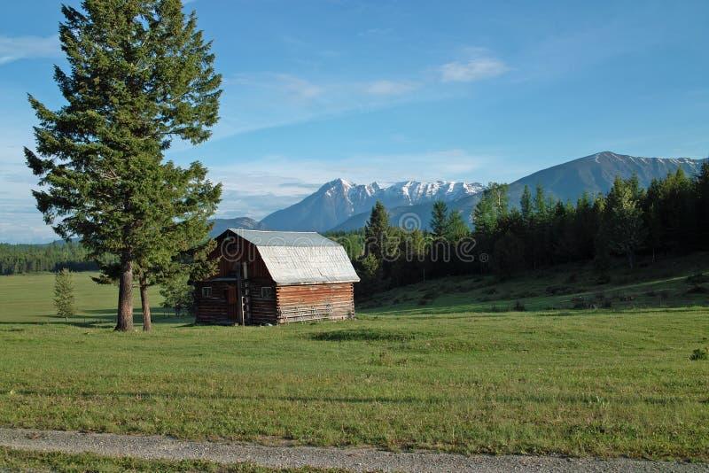 农场,哥伦比亚河谷, BC,加拿大 免版税库存照片