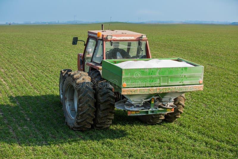 农夫与氮气,磷,钾肥料的施肥麦子 免版税库存图片