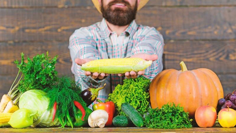 草帽农夫_农夫土气村民出现 生长有机庄稼 提出新鲜蔬菜的农夫草帽 快乐的人 免
