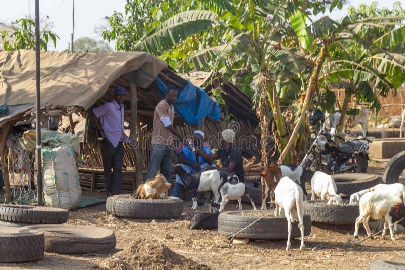 农夫在动物市场上 免版税库存照片