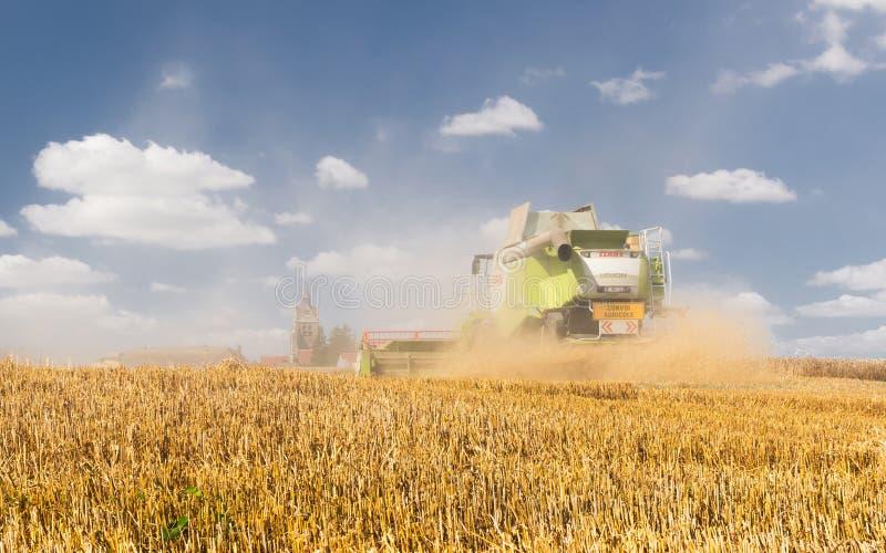 农夫在收获工作 免版税库存图片