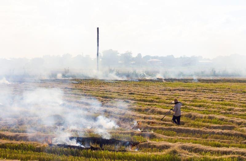 农夫在领域的烧伤秸杆 库存照片