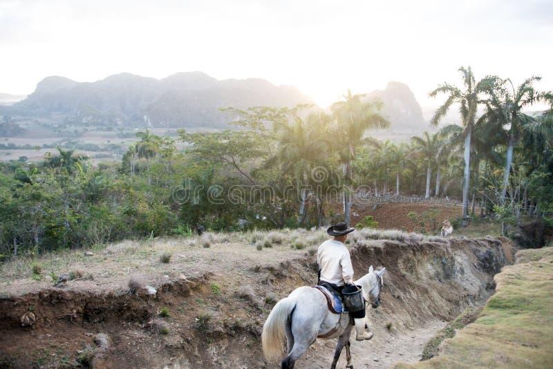 农夫在Vinales 免版税库存图片