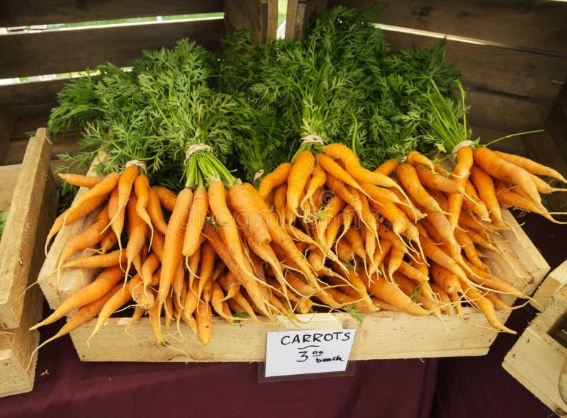 农夫市场红萝卜 库存图片