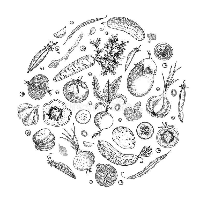 农夫市场菜单设计模板 葡萄酒手拉的剪影传染媒介例证 线性图表 被刻记的样式 能 皇族释放例证