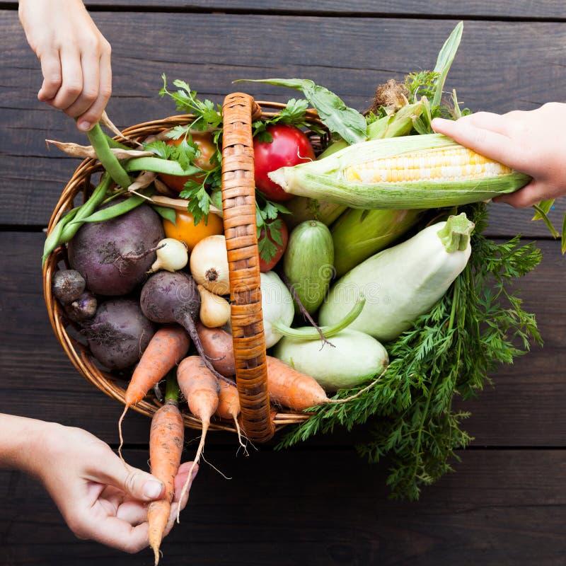 农夫新鲜蔬菜,有机食品背景 库存照片
