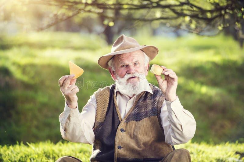 农夫用乳酪 免版税图库摄影