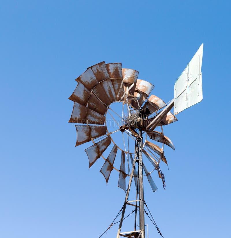 农夫用于的风车抽水 库存照片