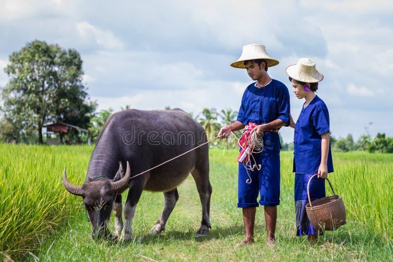 农夫衣服的夫妇农夫 免版税库存图片