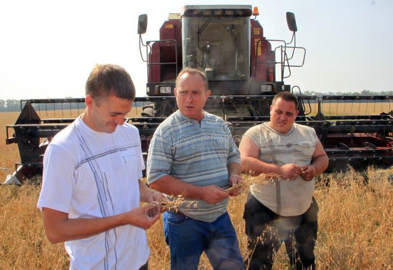 农夫谈论小米的质量 免版税库存图片