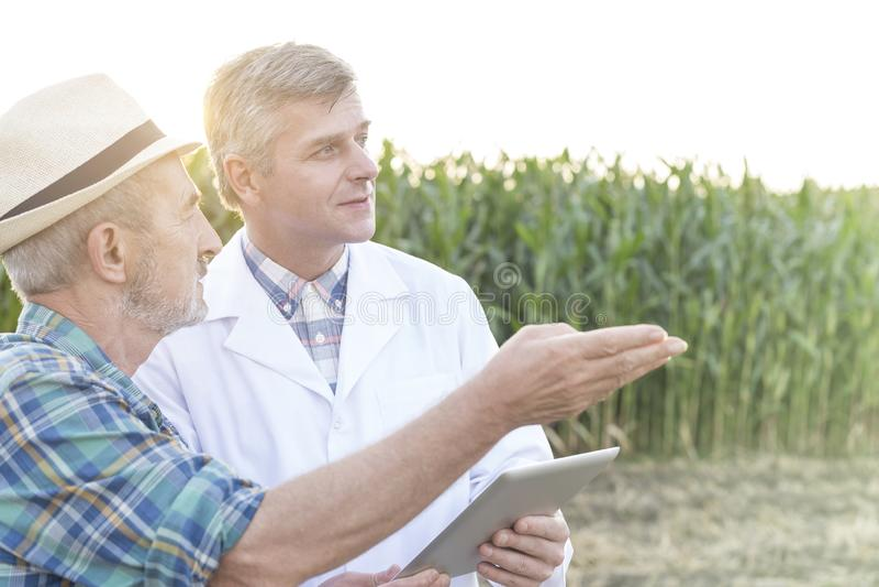 农夫谈话与有数字片剂的科学家在农场 库存照片