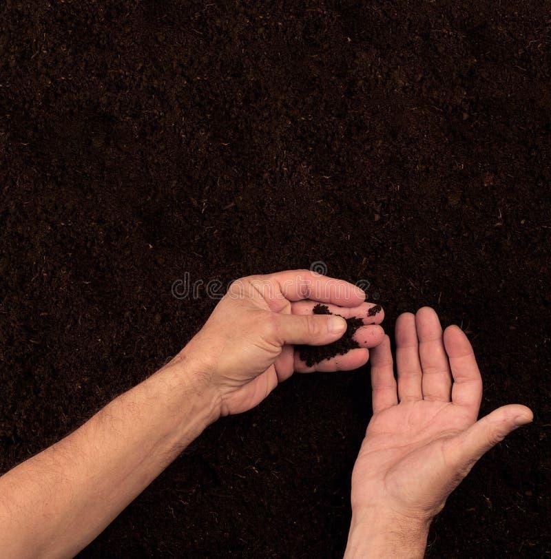 农夫递检查在黑暗的背景的土壤 免版税库存图片