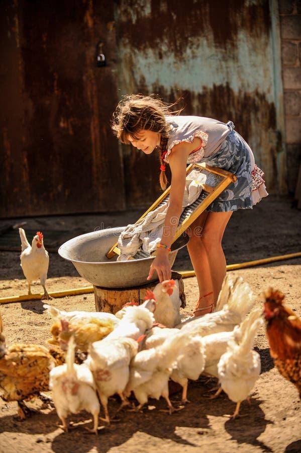 农夫` s女儿在庭院里洗涤他的父亲` s衬衣,包围由鸡 一个逗人喜爱的女孩是愉快,帮助的家庭 免版税库存图片