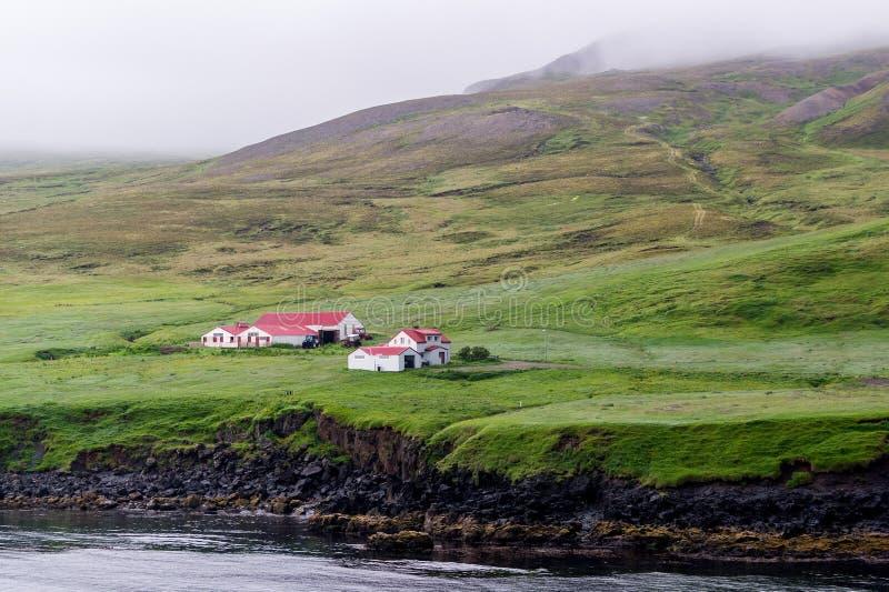 农庄在冰岛 图库摄影