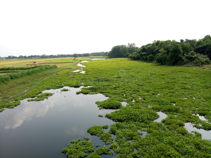 农村与河一起 库存照片
