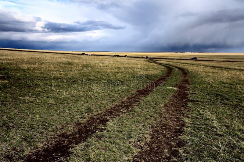 农村中间的路 免版税图库摄影
