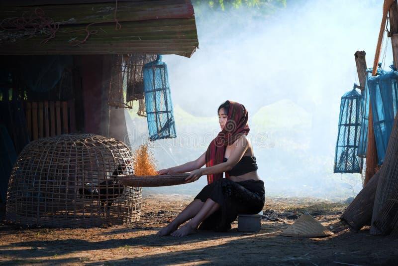 农村亚裔妇女生活方式在领域乡下泰国 库存照片