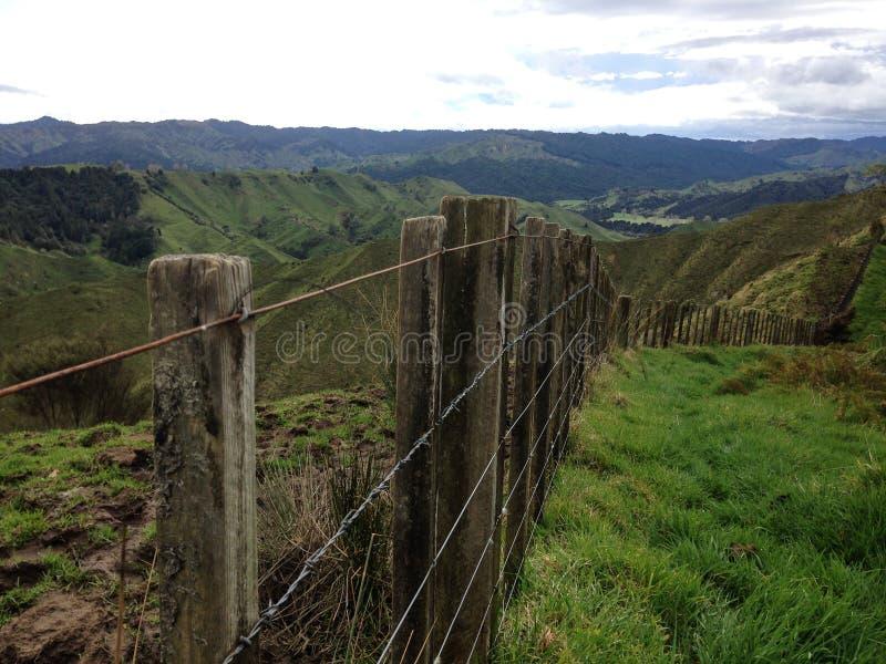 农村农厂篱芭在新西兰 免版税库存图片