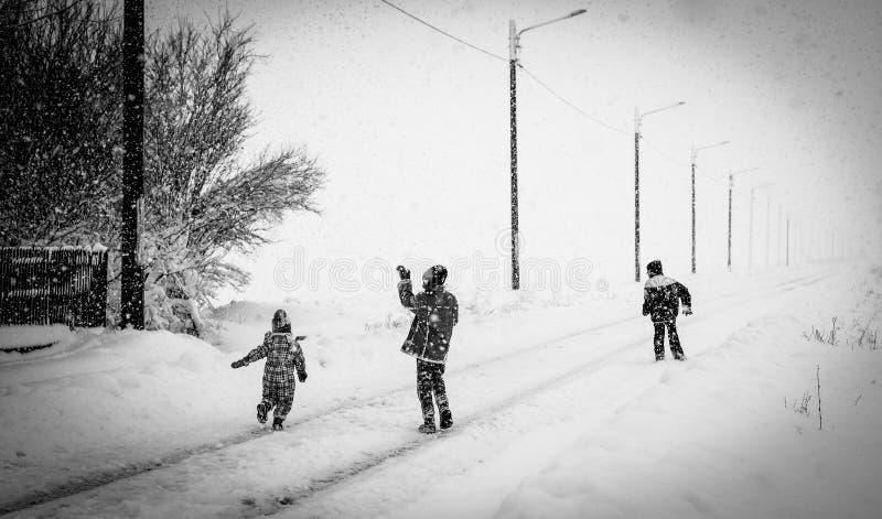 农村冬天 免版税库存照片