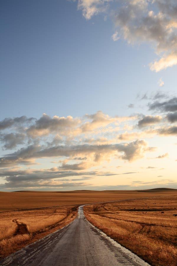农村区中间的路 免版税库存照片