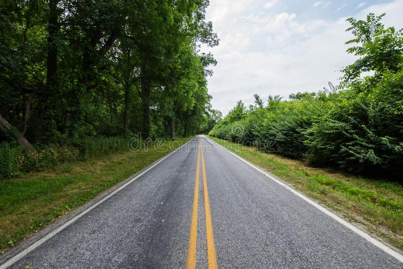 农村国家约克县宾夕法尼亚农田,在一个夏日 免版税库存图片