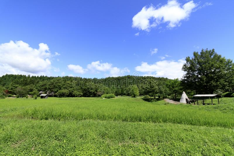 农村场面在远野市 库存照片