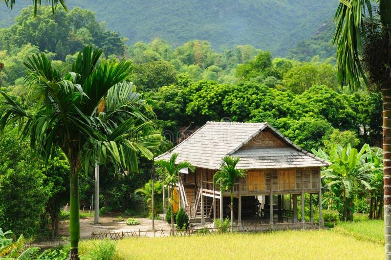 农村场面越南 库存照片