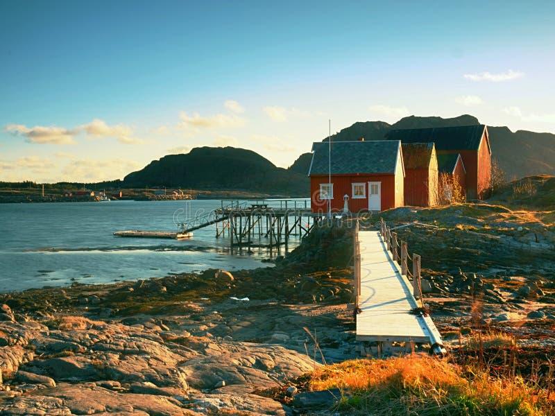 农村挪威风景,传统红色和白色木房子在岩质岛上 Suny春日用光滑的水 图库摄影