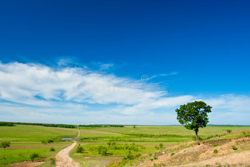 农村横向的路 免版税库存图片
