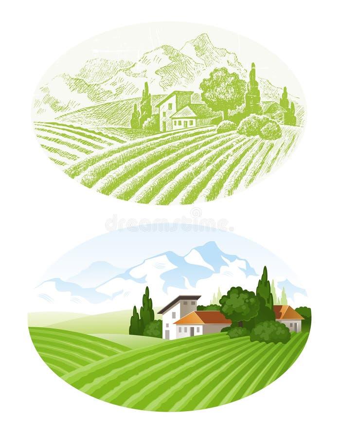农村的横向