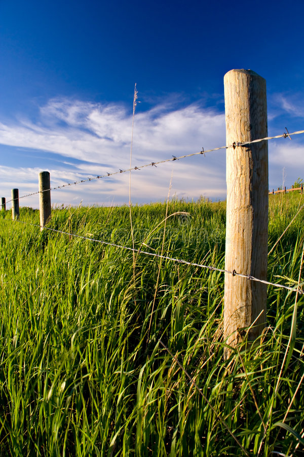农村的fenceline