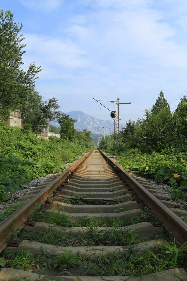 农村铁路 免版税图库摄影