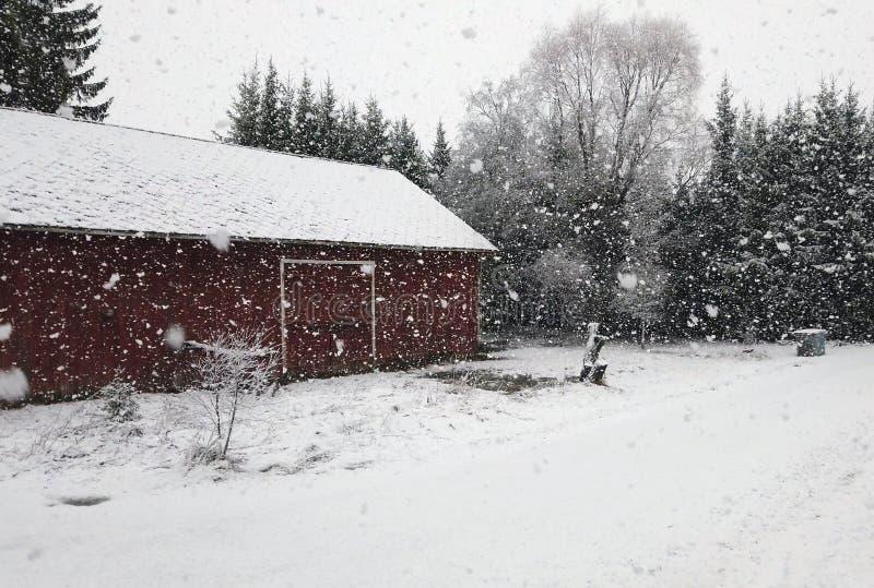 农村降雪量很大。农村降雪量很大。复制空间。 图库摄影