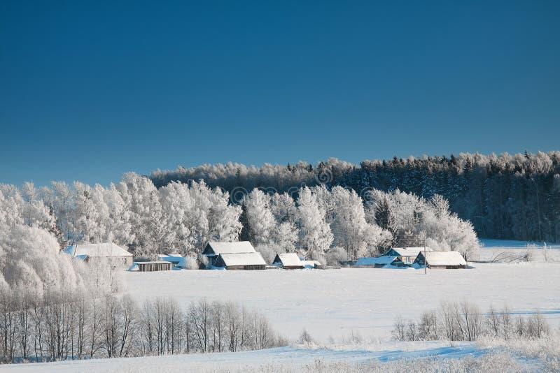 农村风景在冬天冷淡的天 免版税库存图片