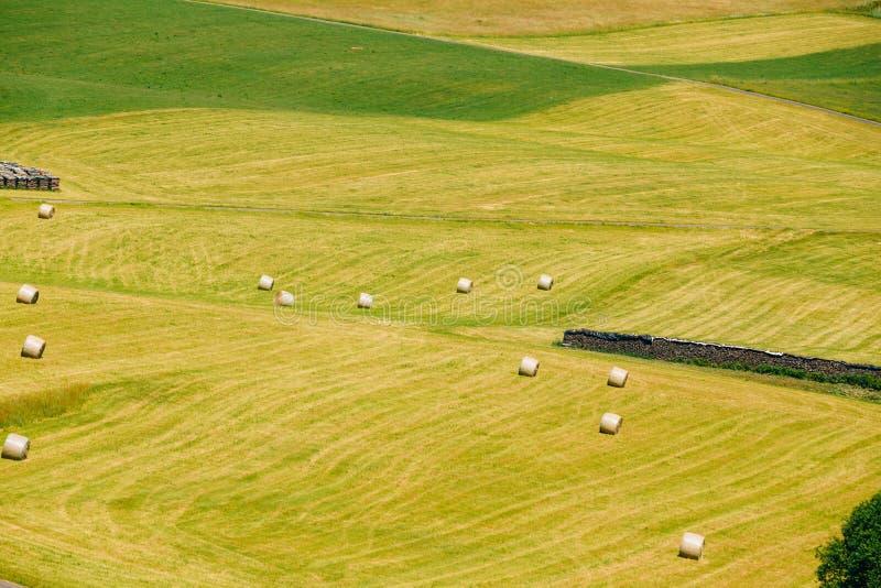 农村风景领域草甸,德国看法  免版税库存图片