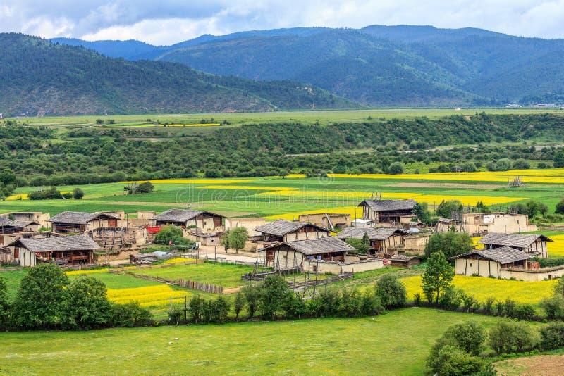 农村风景,香格里拉 图库摄影