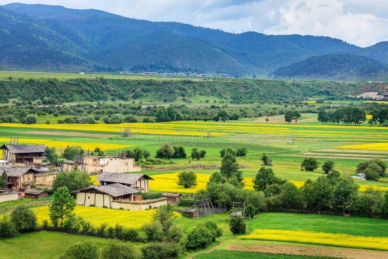download 农村风景,香格里拉 库存照片.