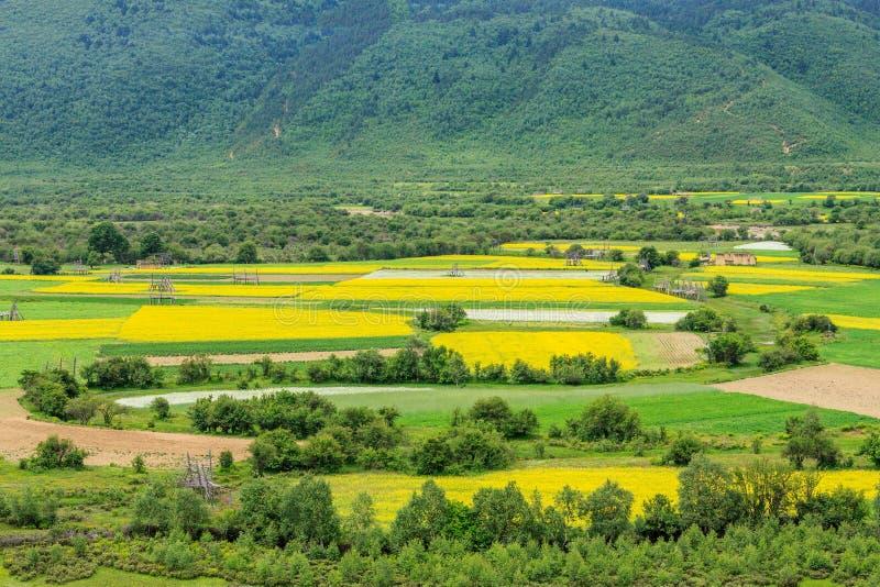 农村风景,香格里拉 库存图片