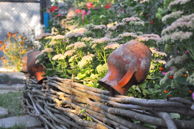 农村风景-在wattled篱芭的老泥罐在花附近 免版税图库摄影