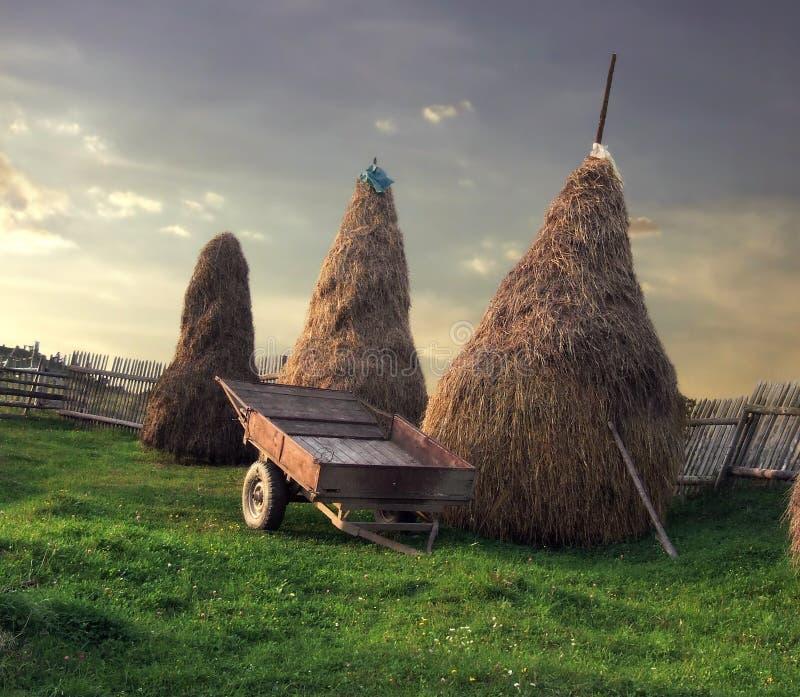 农村风景 库存照片