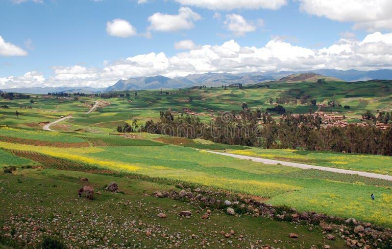 农田、房子和路在山 免版税库存照片