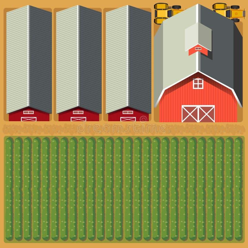 农田和庄稼鸟瞰图  向量例证