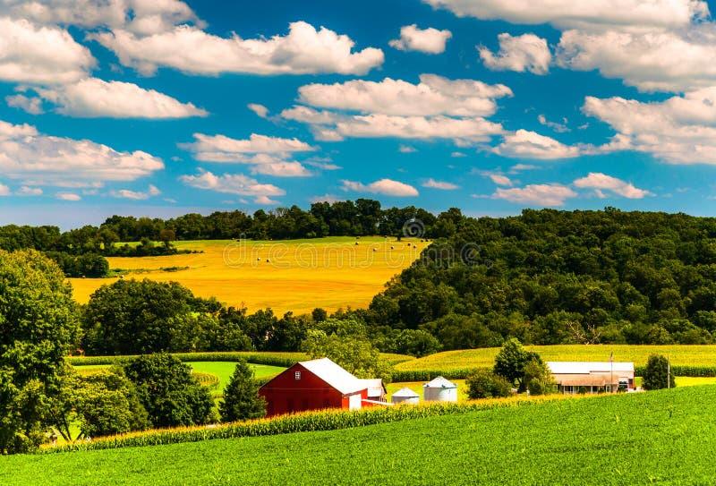 农田和绵延山在农村约克县,宾夕法尼亚 库存照片