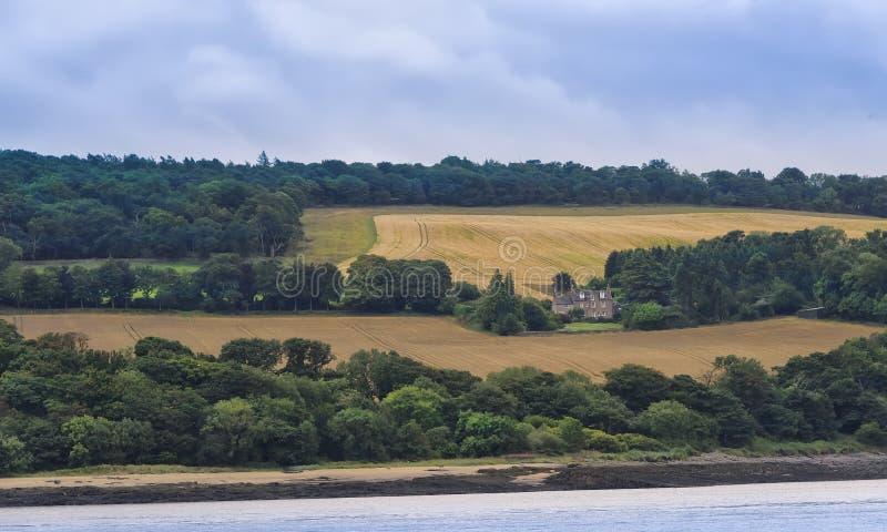 农田在南Queensferry,苏格兰 免版税库存照片
