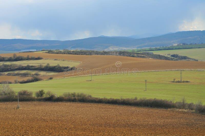 农田在斯洛伐克 免版税库存照片