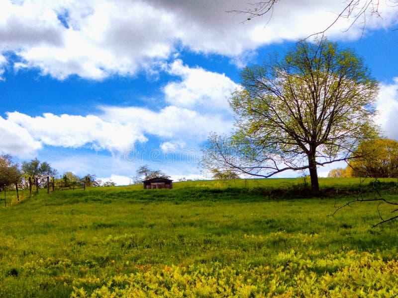 农田在Simsbury康涅狄格 免版税图库摄影